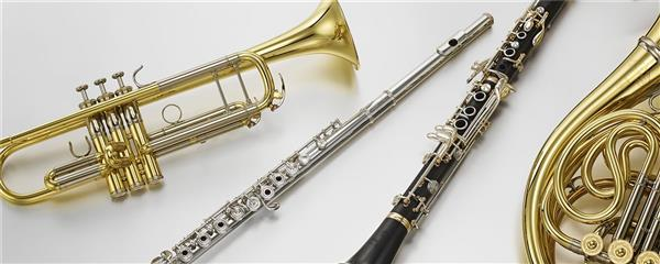DeWaal, John - Instrumental Music / Instrument Choices